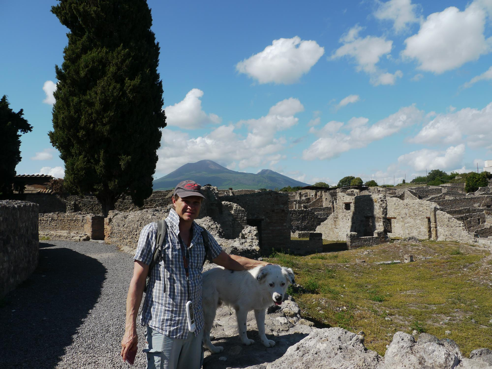 The ruins of Pompeii and one of many resident stray dogs
